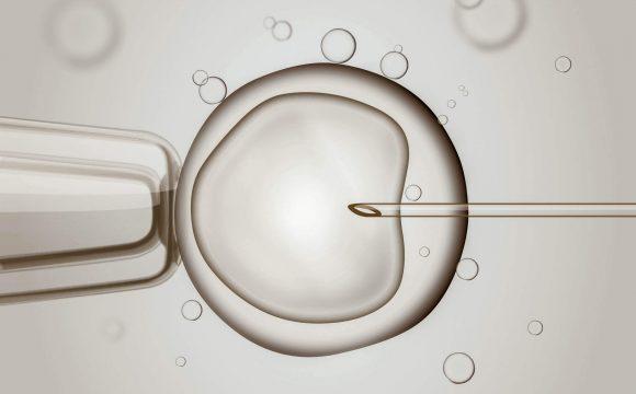 Inyección Intracitoplasmática de Espermatozoides (ICSI)