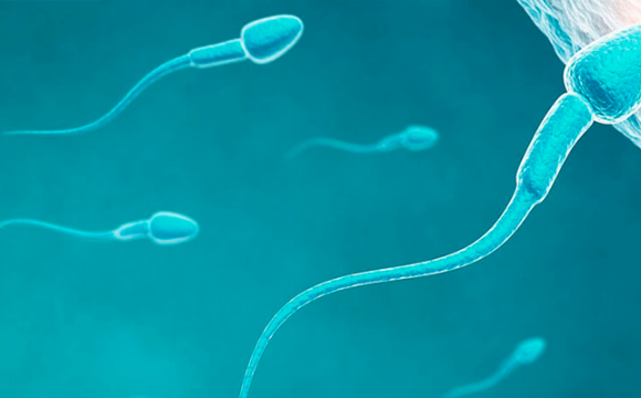 Espermiodonación